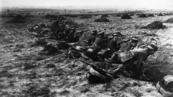 A németek és az oroszok fegyverszünetet kötöttek a világháborúban a farkasok miatt
