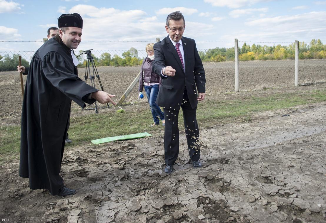Lázár Zsolt esperes (b) és Babák Mihály polgármester őszi rozst vet Szarvas határában 2013. október 3-án.