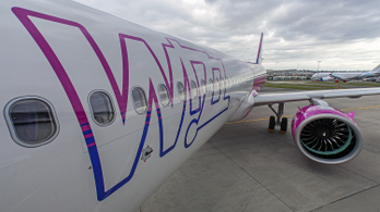 Dobhatja a Wizz Air a Malév GH-t a lehúzások miatt