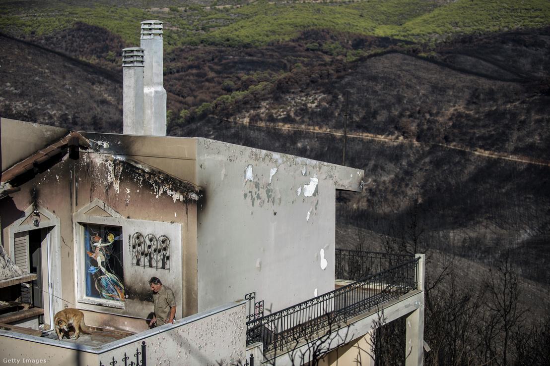 Egy erdőtűzben súlyosan megrongálódott ház Athéntól keletre, Mati városában, Görögországban