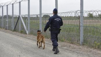 Frontex-jelentés: kutyával kergették vissza a menekülteket Szerbiába a magyar rendőrök