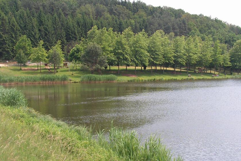 hársas-tó-part