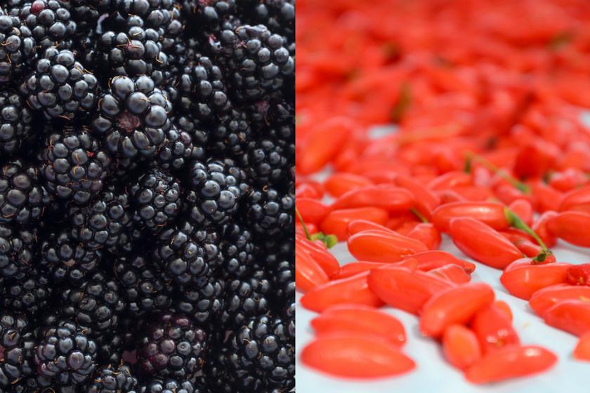 A Japánból származó goji bogyó igen kedvelt gyümölcsnek számít magas antioxidánstartalma miatt. Meglepő vagy sem, de a Magyarországon is termő szeder még több antioxidánst tartalmaz.