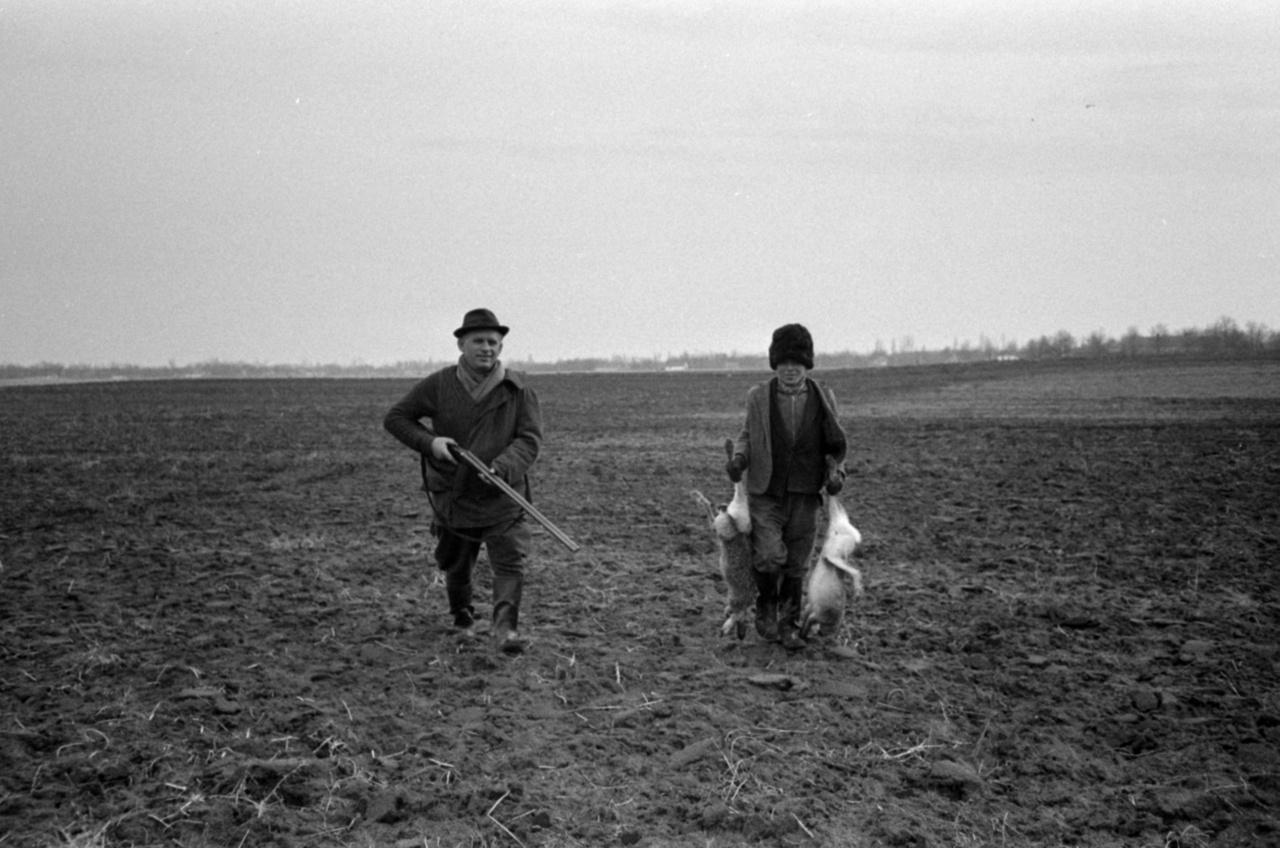 Rendszerek jöttek, rendszerek mentek, a puskát 1966-ban is a vadász vitteA vadászok létszáma a hatvanas-hetvenes évekre már nagyjából azonos volt a háború előttivel, bár a társadalmi megoszlás teljesen másként alakult. Egy 1975-ös felmérés szerint a vadászati igazolvánnyal rendelkezők 34%-a munkás, 21%-a téeszben dolgozó paraszt, 41%-a szellemi foglalkozású és 4%-a kisárutermelő volt.