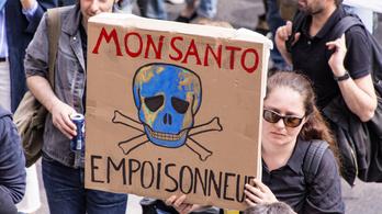 Sokat fizetett a Monsanto, hogy a Google eltüntesse a negatív híreket