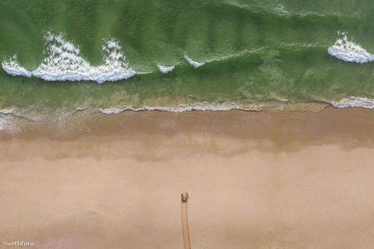 Nemrégiben írtunk egy lélegzetelállító természeti jelenségről, ahol a képeket nézve első blikkre mindenkinek a sivatag homokja ugrott be, pedig a tenger vize mosta a partot ilyen fodrosra