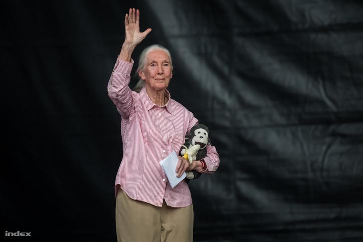 Jane Goodall, Ph.D., DBE, a Jane Goodall Intézet alapítója és az ENSZ békenagykövete.
