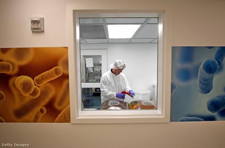 A bennünk élő baktériumok, gombák és más mikrobák alapján működő gyógyszer-előállító laboratórium Cambridge-ben.