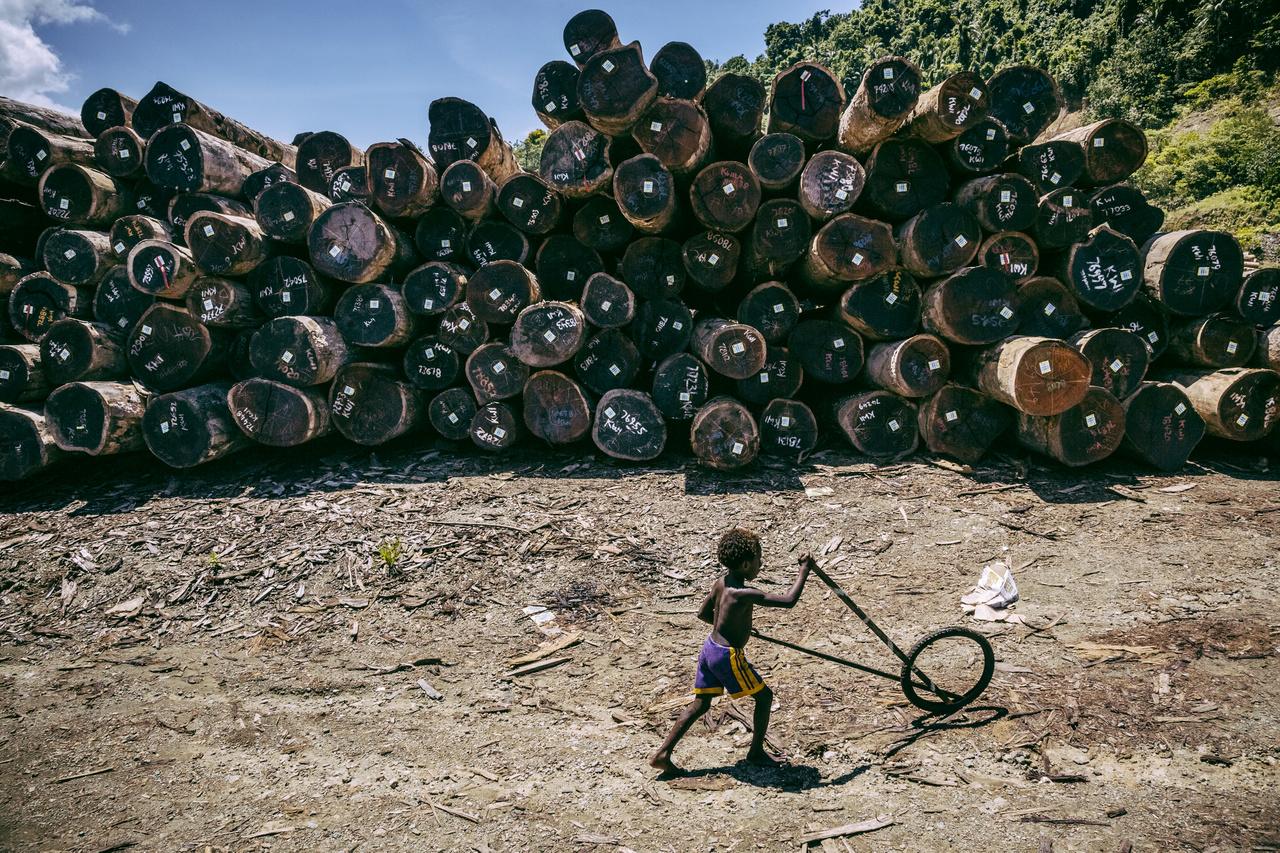 Turubu Bay környékén komoly fakitermelés zajlik, igaz, a Világbank becslése ennek 70 százaléka történik. Ez a tevékenység nagy terhet ró a természetre, a földcsuszamlások miatt utakat és a mezőgazdasági művelésbe vont a területeket válnak használhatatlanná, a munkagépek sokszor beszennyezik azt a kevés vízforrást, ahol halakat lehet fogni. A selejtes farönkök közül vannak, amiket elégetnek, van, amit csak otthagynak az út mellett. A legnagyobb faanyag felvásárló Kína.