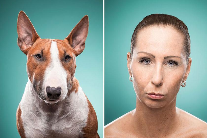 Tudományos tény, hogy a kutyák és a gazdáik hasonlítanak: a kutatók szerint ez az oka
