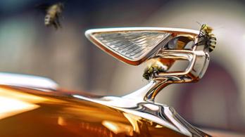 Saját méze lesz a Bentley-nek