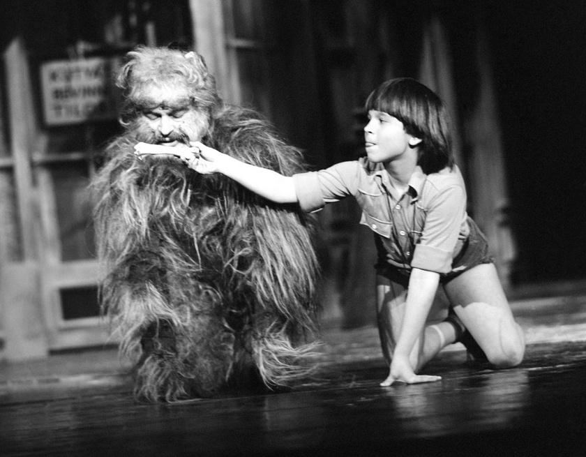 Latinovits Zoltán és Kovács Krisztián A kutya, akit Bozzi úrnak hívtak című musicalben a Fővárosi Operettszínházban.