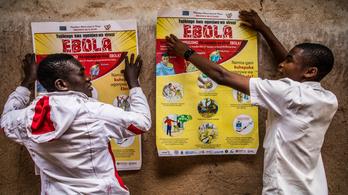 Két új gyógyszer is jó az ebola ellen