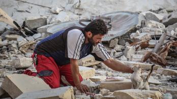 Újra akcióban az aleppói macskamentő