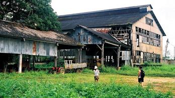 Így nem sikerült Henry Fordnak új Detroitot építeni a dzsungel mélyén