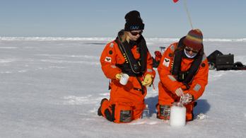 Tízezrével mutattak ki mikroműanyagot hóban és jégben is