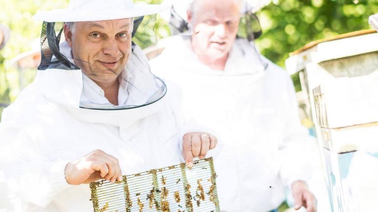 Orbán a háta közepére sem kívánja a klímaváltozás ügyét