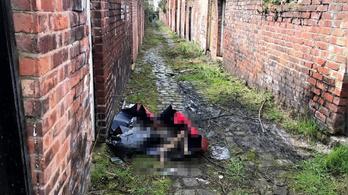 Magyar párt ítéltek börtönre állatkínzásért Angliában