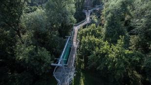 Szórakoztató séta a magyar dzsungelben – Lombkoronasétány és óriáscsúszda Makón