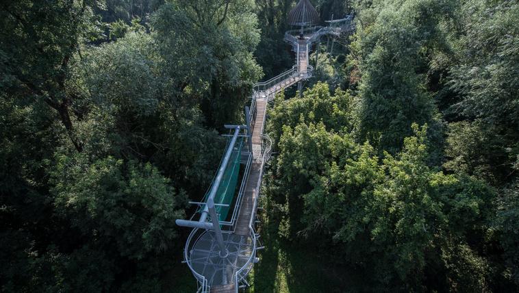 Szórakoztató séta a magyar dzsungelben