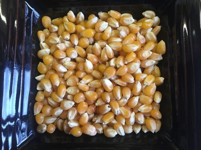 popcorn-877076 1280