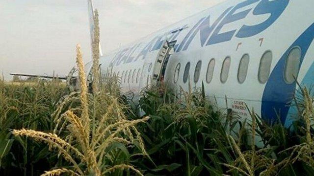 Aibus A321 egyben a kukoricásban