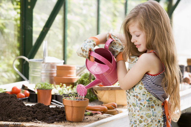 stockfresh 85292 young-girl-in-greenhouse-watering-potted-plant-