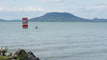 Egy forró nyári napon 300 ezer ember fürdik a Balatonban