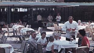 Hiába a gasztroforradalom - zuhanórepülésben a feltörekvő balatoni éttermek