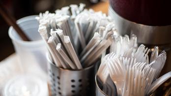 Szlovákia már döntött: betiltja a műanyag szívószálat és a műanyag evőeszközöket