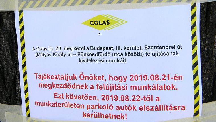 A Szentendrei úti fák miatt feljelentést tevő lakó szerint törvénytelenül kezdik meg a felújítást