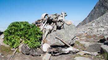 A himalájai Csontváz-tó tömegsírjának titka