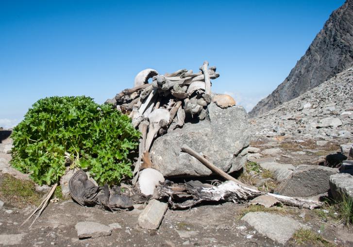 Emberi csontvázak a Roopkund-tónál