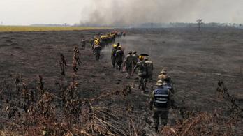 Hétszázezer hektár égett le Bolíviában az Amazonas mentén