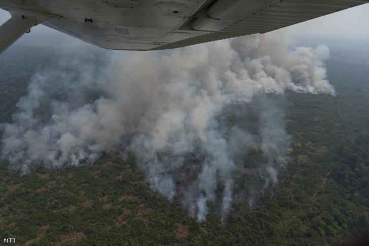 Erdőtűz pusztít az Amazonas-medencében lévő brazíliai Porto Velho közelében 2019. augusztus 23-án