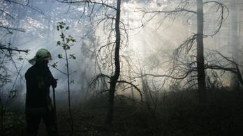 Egy felmérés szerint a tűzoltók 73,9%-a fontolgatja a pálya elhagyását
