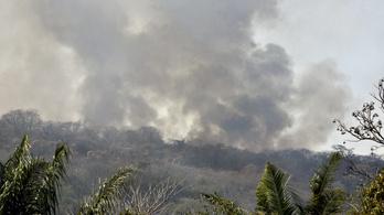 Bolívia elvárja Macrontól, hogy személyesen nézze meg a lángoló Amazonast