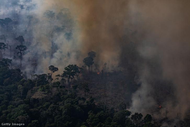Légifelvétel az amazonasi esőerdőről a Candeias do Jamari régióban, Brazíliában 2019. augusztus 25-én