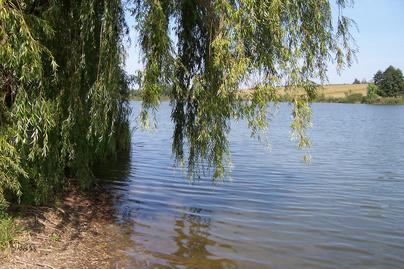 gébárti-tó-part