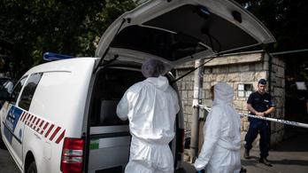 Budai gyilkosság: a BRFK szerint nem rajtuk múlt a család élete