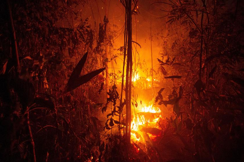 Lángol a dzsungel a Rondonia brazil szövetségi államban lévő Porto Velho közelében.