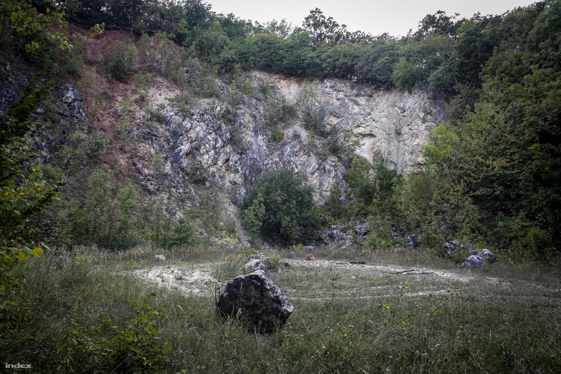 Korábbi pilisi mészkőbánya helyszíne