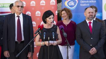 Alkotmánybírósághoz fordul a köznevelési törvény miatt az ellenzék