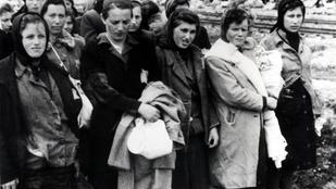 """Menstruáció és a holokauszt: így lett a """"havibajból"""" a szabadság szimbóluma"""