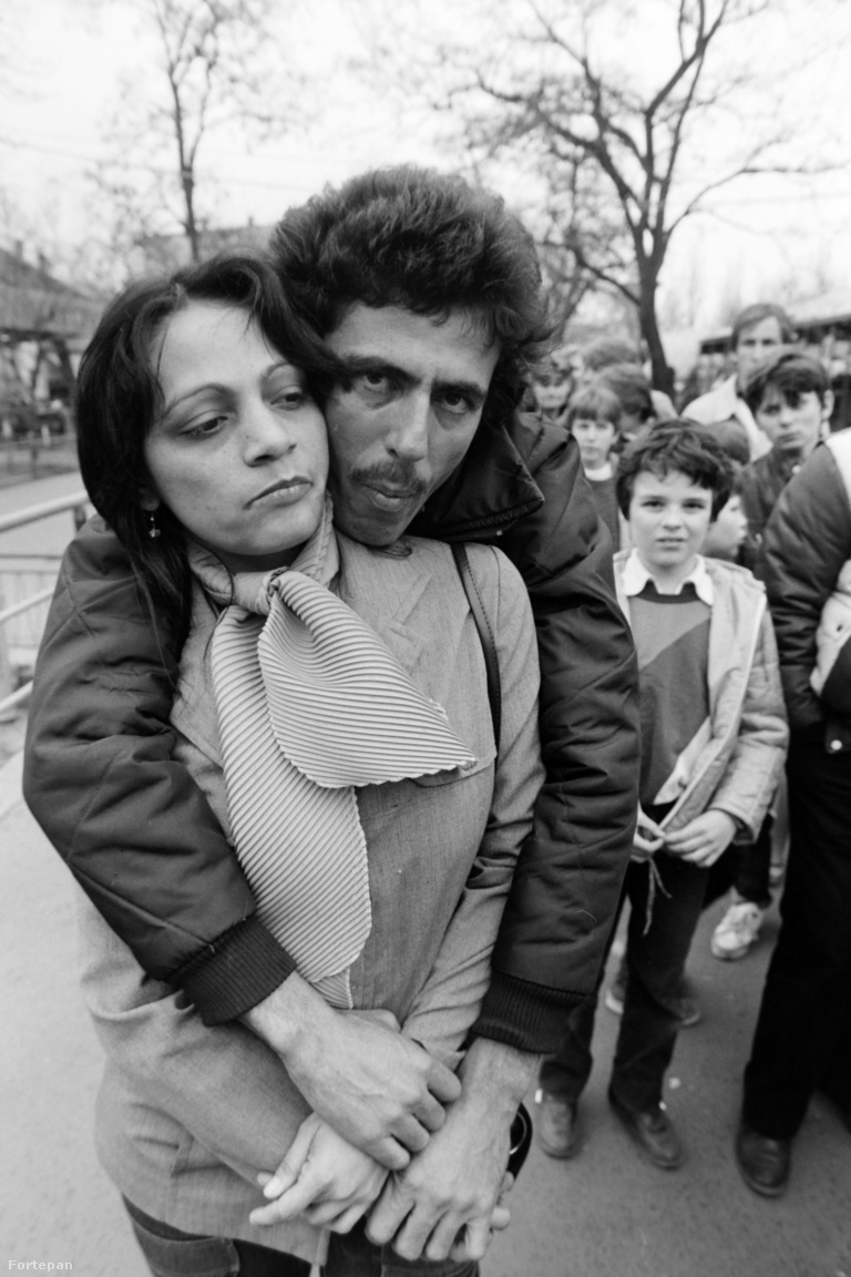 1988-ra kétezer-ötszáz kubai állampolgár dolgozott Magyarországon, huszonnégy gyárban. A többséget jelentő nők leginkább Budapesten: a Kistextnél, a Lőrinci Fonóban, Sortexben, Újpesti Cérnagyárban, Goldbergernél, de vidéken is: Budakalászon, Szegeden, Kaposváron, Pápán, Sopronban. A férfiak például a Videotonnál vagy a Taurus-ban (utóbbiról Jávor István készített fotósorozatot a nyolcvanas években, válogatásunkat itt nézheti meg).