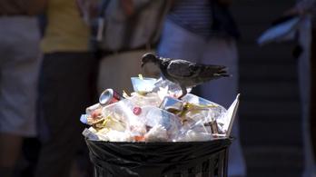 Októbertől tilos lesz műanyagból enni vagy inni a brassói rendezvényeken