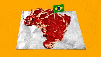 Nem égetnék az esőerdőt, ha nem ennénk ennyi marhahúst?