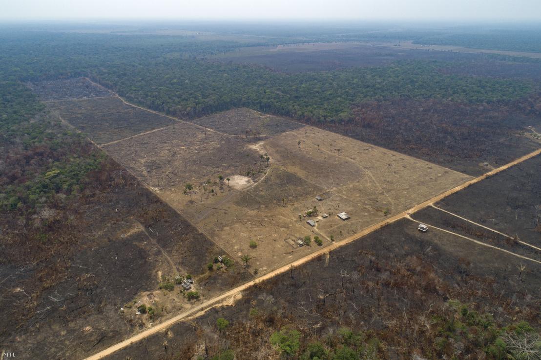 Marhatenyésztők által leégetett terület az Amazonas-medencében a brazíliai Amazonas szövetségi államban lévő Canutama közelében 2019. szetpember 2-án.