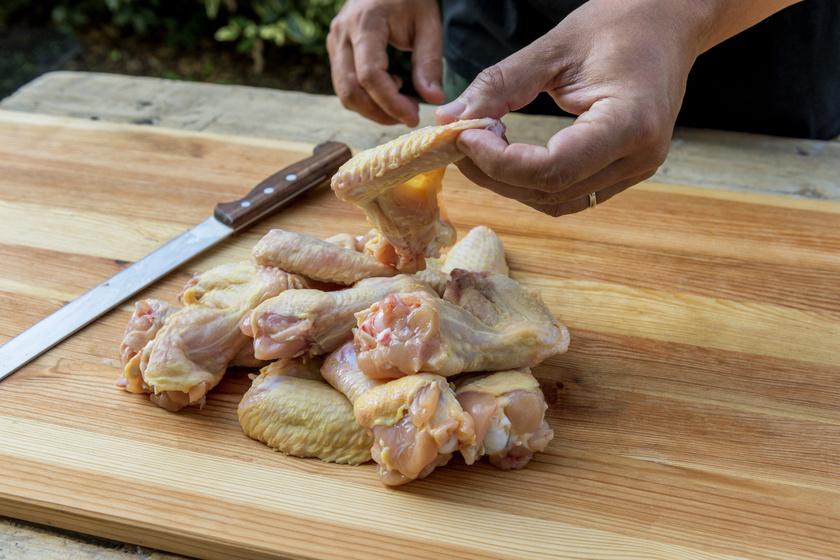 csirke trancsir