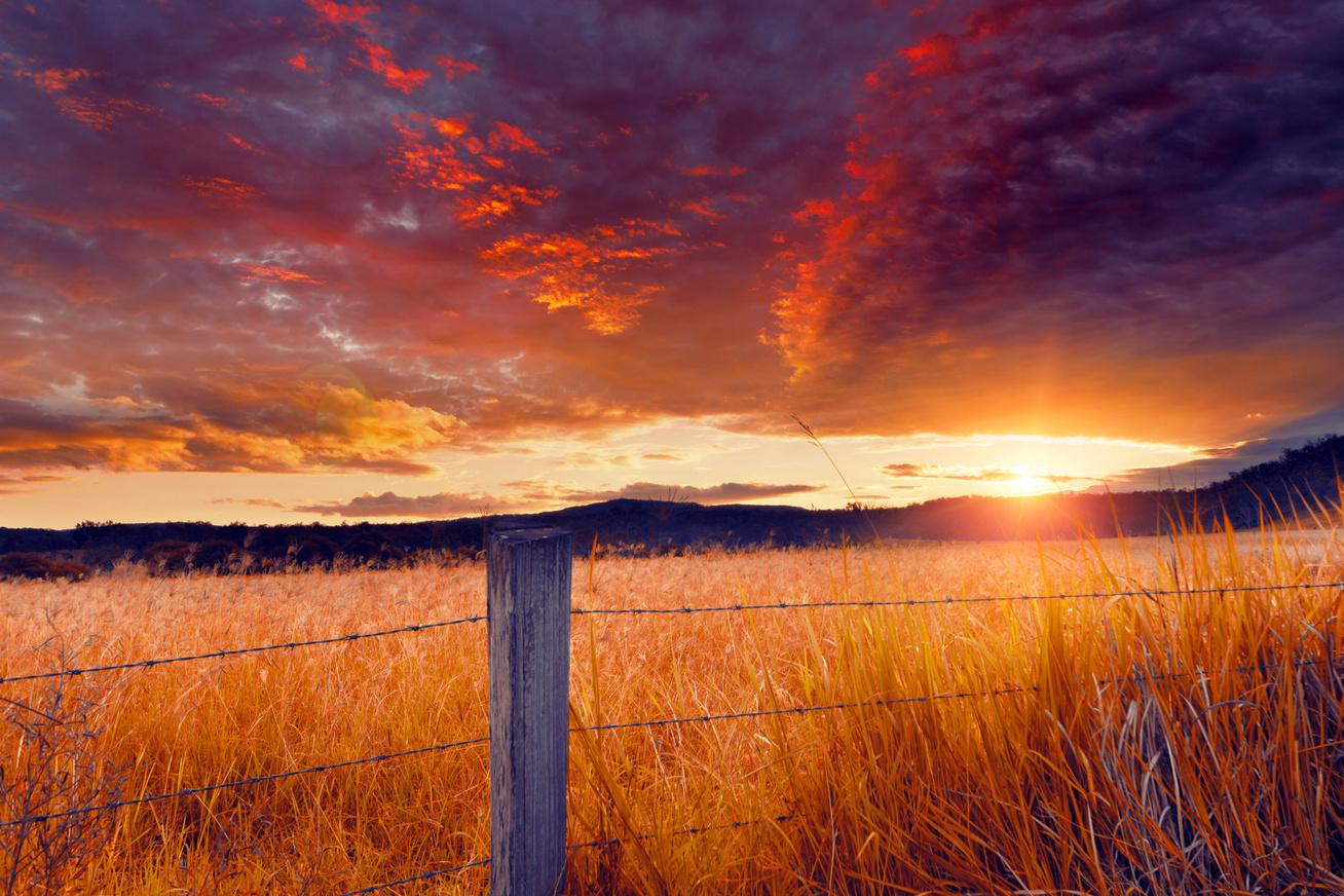 nyari-naplemente